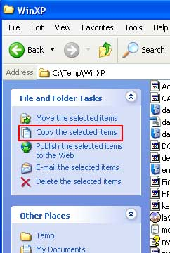Copy selected items